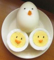tojás csibék